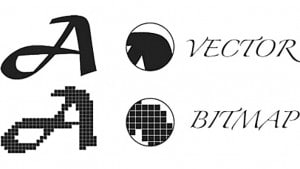 vector logo file